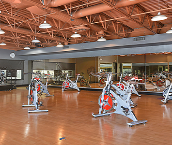 rows of spin bikes in a group cycling class